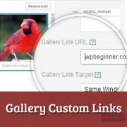 How to Add Custom Links for Gallery Images in WordPress