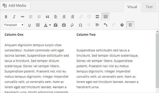 This is how your columns would appear in the WordPress post editor
