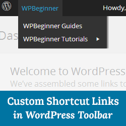 wordpress how to add logged in user firstname to page
