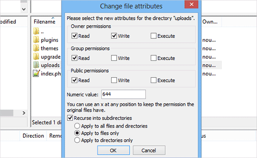 Setting file permissions for files in WordPress