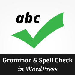 Essay checker grammar