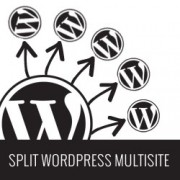 Split WordPress Multisites