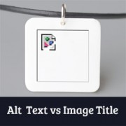 Image Alt Text vs Image Title in WordPress - What's the Difference?