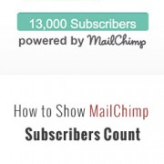 MailChimp Subscribers Count