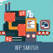 Optimizing Images with WP Smush (Pro, Cons, and Alternatives)