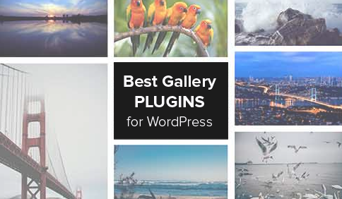 Which is the Best WordPress Photo Gallery Plugin? Performance + ...