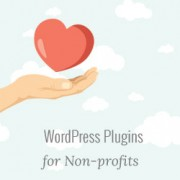 16 Best WordPress Plugins for Nonprofits