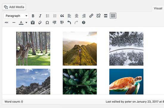 Photos in columns and rows as a gallery in WordPress