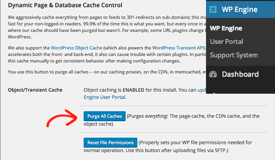 how to show empty cache in wordpress admin bar