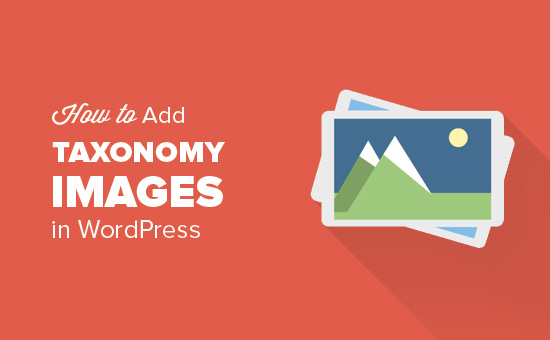 How to Add Taxonomy Images in WordPress