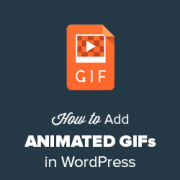 How to Add Animated GIFs in WordPress