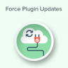 How to Force WordPress Plugin Updates