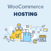 How to Choose the Best WooCommerce Hosting Company?