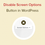 How to Disable the Screen Options Button in WordPress