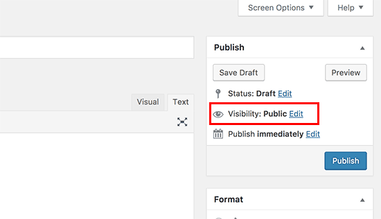 Edit visibility options of a blog post or page in WordPress