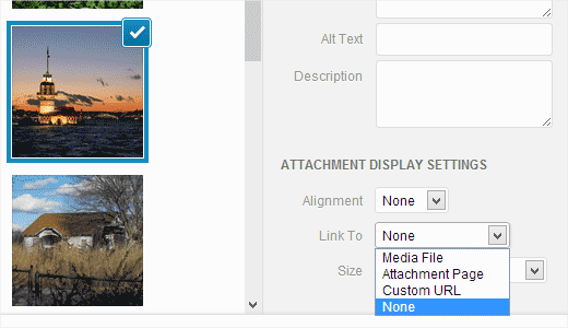 Removing default image link option in WordPress