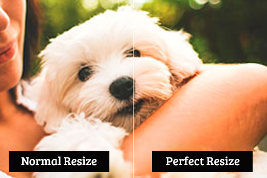 Comparing normal resize vs perfect resize