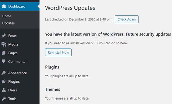 WordPress update screen