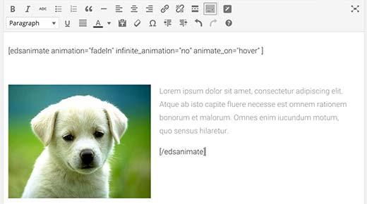 Vervang dummy-inhoud in shortcode met uw eigen inhoud