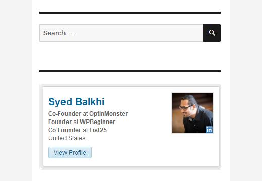 Syed Balkhi LinkedIn Profile