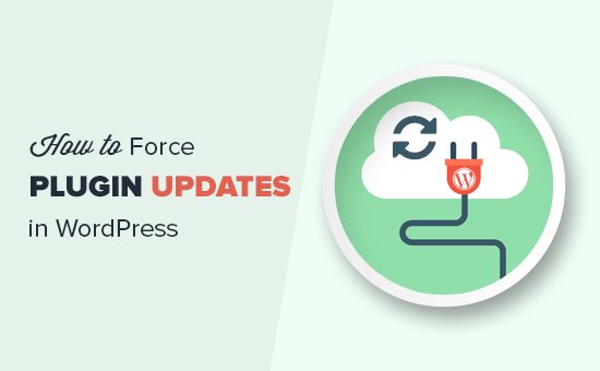 Force WordPress plugin updates