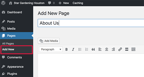 Adding a new page in WordPress