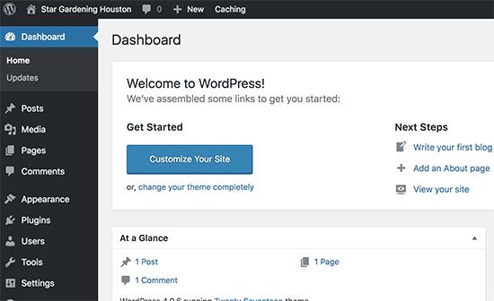 WordPress admin area