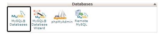 cPanel의 데이터베이스 아이콘