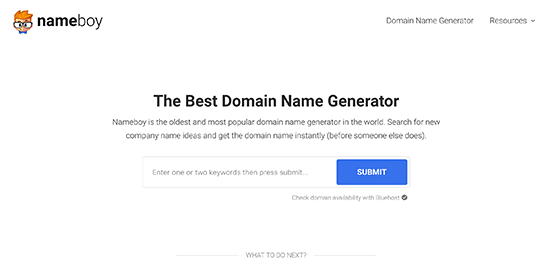Nameboy domain generator tool