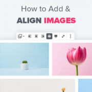 How to Add and Align Images in WordPress Block Editor (Gutenberg)
