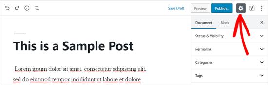 WordPress Editor Settings Icon