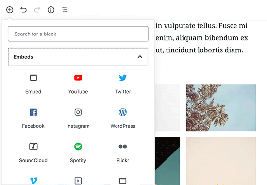 Adding YouTube block in WordPress content editor