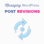 WordPress Post Revisions Made Simple: A Step by Step Guide (2019)