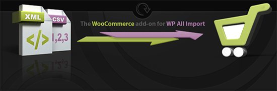 WooCommerce WP All Import