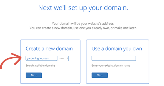 Bluehost domain checker