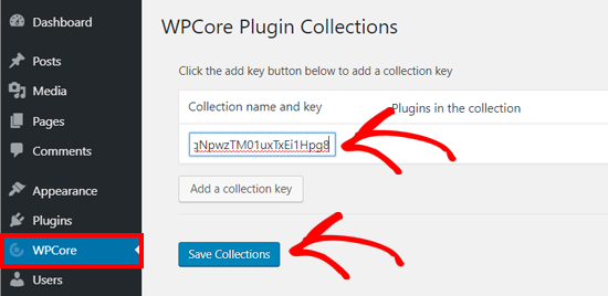 Save WPCore Plugin Collection Key on WordPress