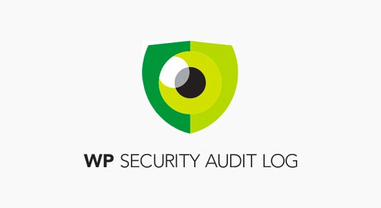 Registro di controllo sicurezza WP