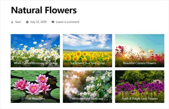 WordPress Photo Gallery Example