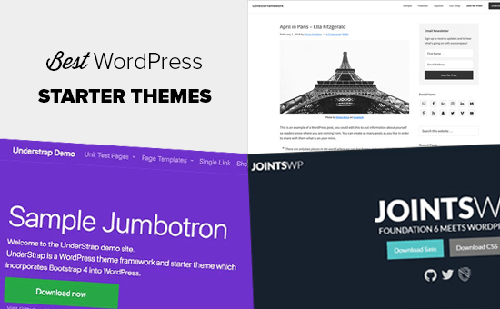 Best WordPress Starter Themes for Developers