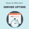 How to Monitor Server Uptime in WordPress