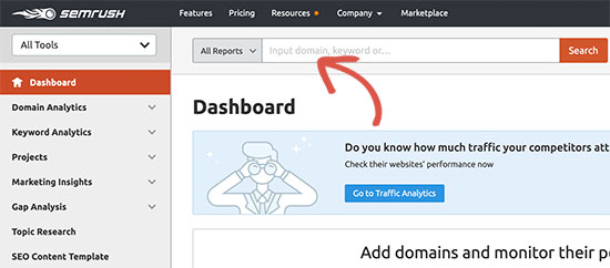 Track a domain name in SEMRush