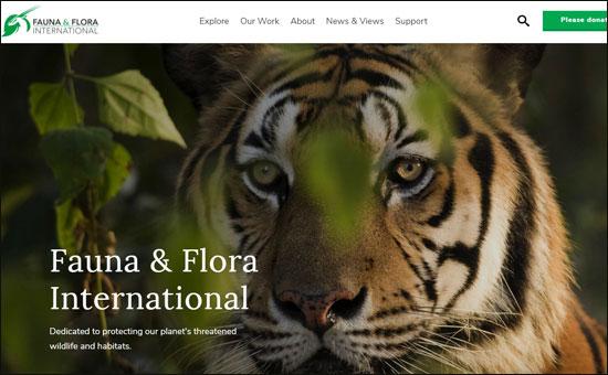 Fauna and Flora