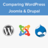 WordPress vs Joomla vs Drupal - Which One is Better?