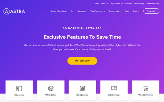 Astra Pro theme for WordPress