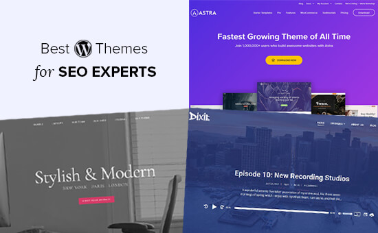 Best WordPress Themes for SEO Experts