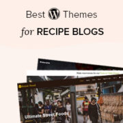24 Best WordPress Themes for Recipe Blogs