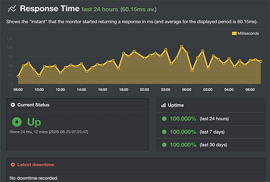 Rocket.net uptime test