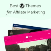23 Best WordPress Themes for Affiliate Marketing