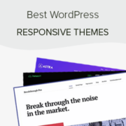 44 Best Responsive WordPress Themes (2020)