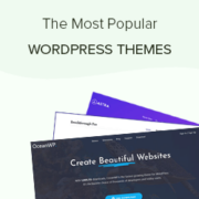 2020's Most Popular and Best WordPress Themes (Expert Pick)